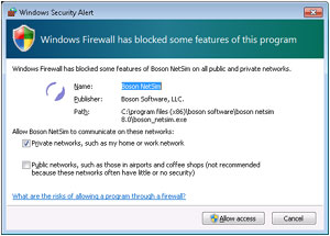 Windows Secruity Alert dialog box