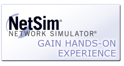 <h1>NetSim 